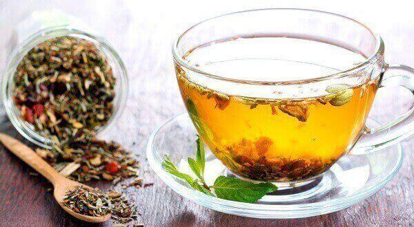 té de hinojo